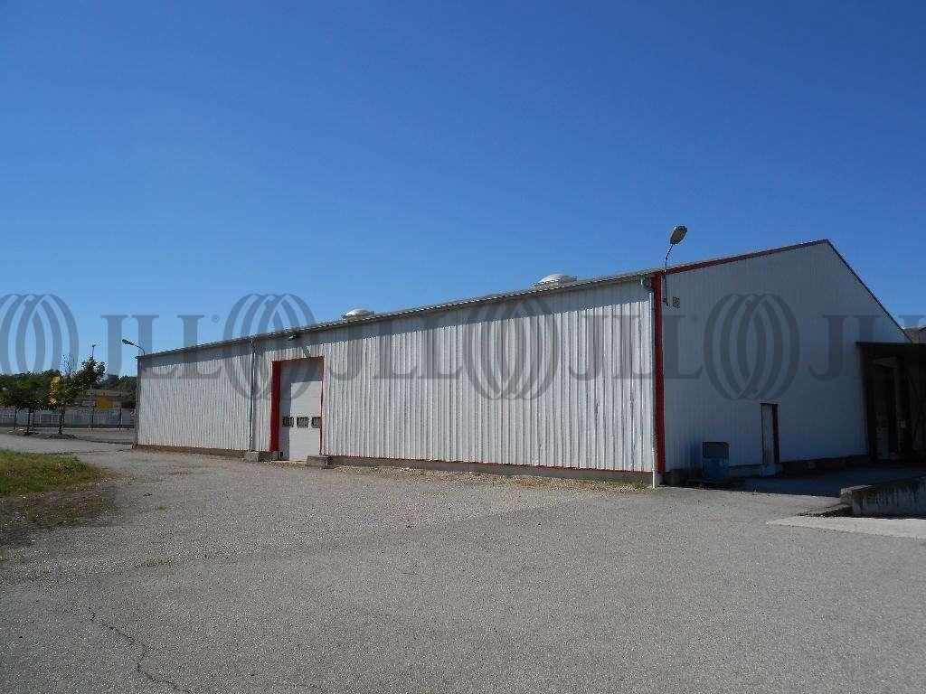 Activités/entrepôt Charvieu chavagneux, 38230 - Achat entrepot Lyon - Nord-Isère - 9590998