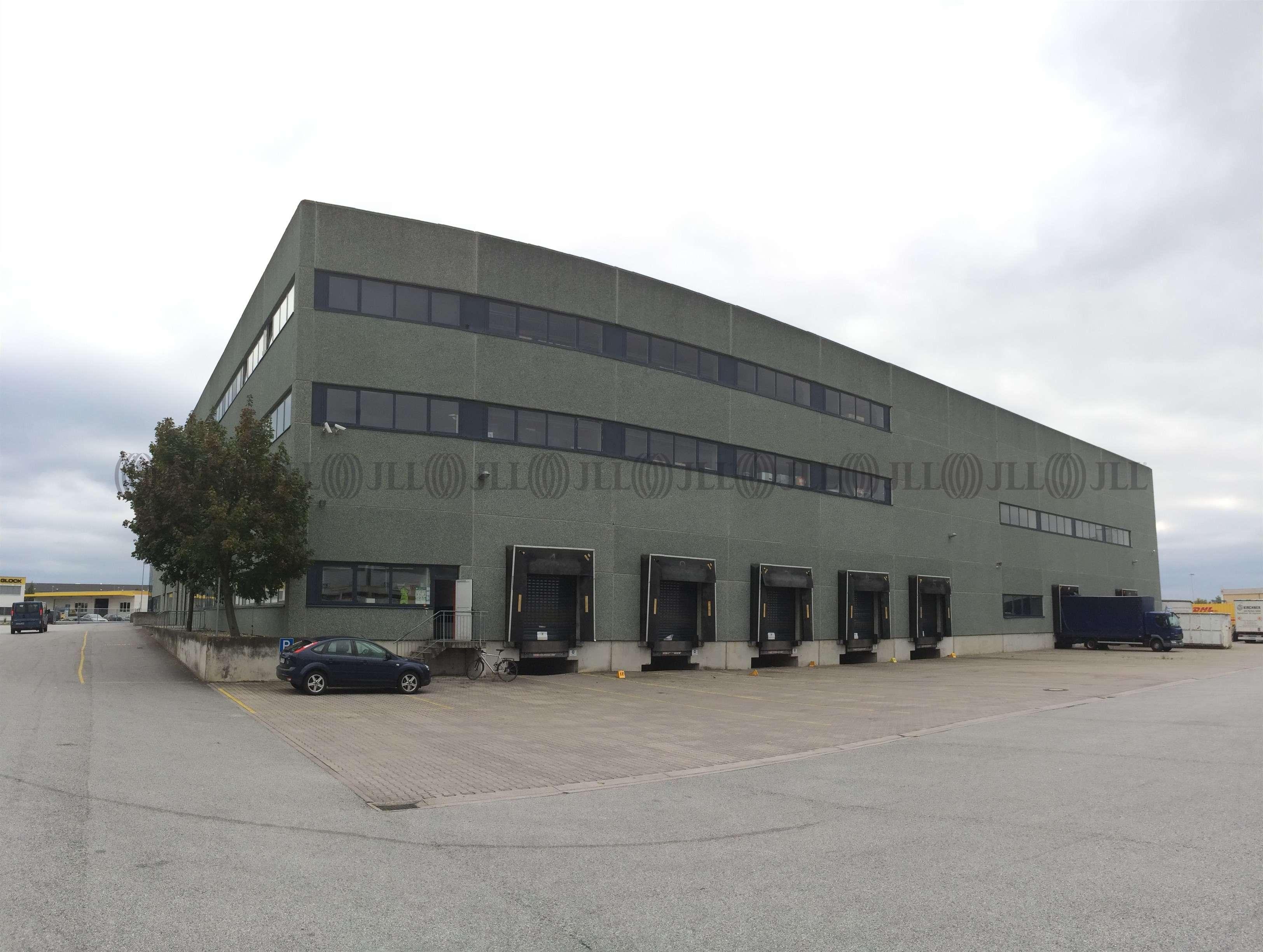 Hallen Gernsheim, 64579 - Halle - Gernsheim - F2366 - 9591165