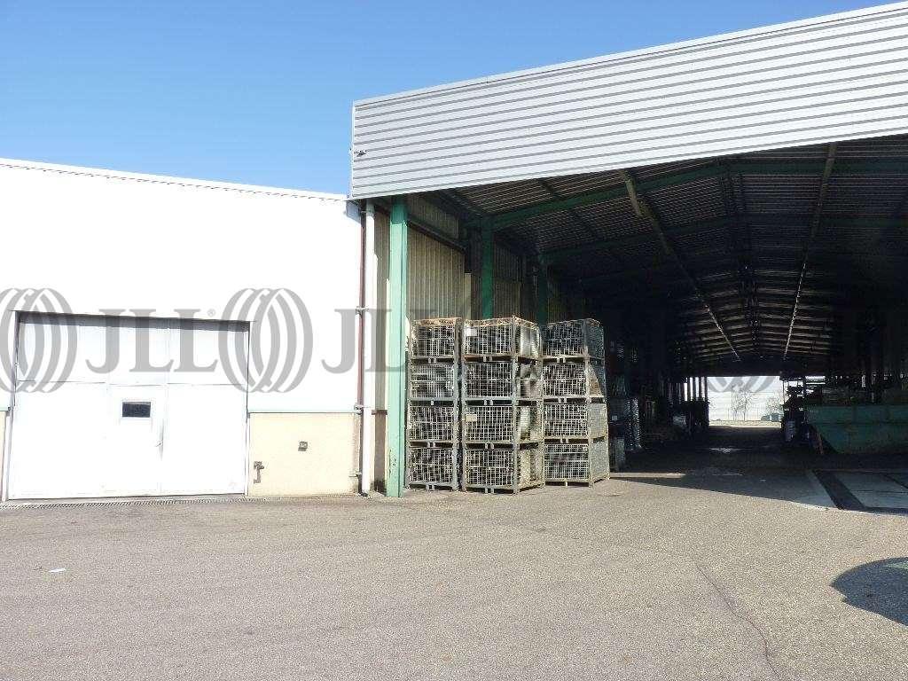 Activités/entrepôt Decines charpieu, 69150 - Location entrepot Decines-Charpieu - 9602070