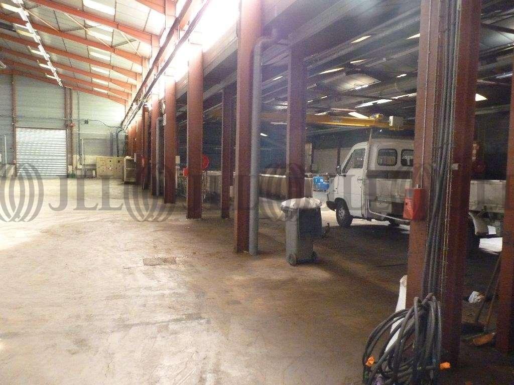 Activités/entrepôt Decines charpieu, 69150 - Location entrepot Decines-Charpieu - 9602074
