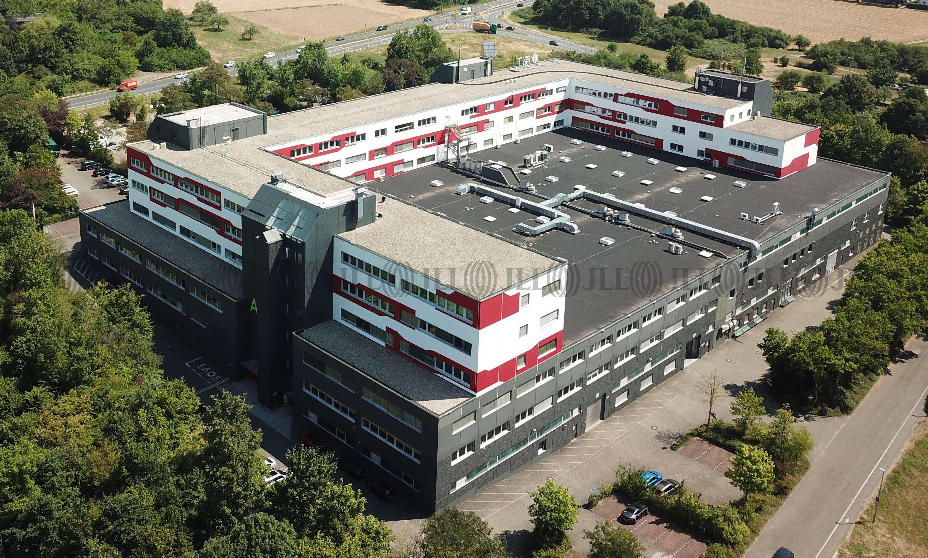 Hallen Schwalbach am taunus, 65824 - Halle - Schwalbach am Taunus - F2051 - 9608689