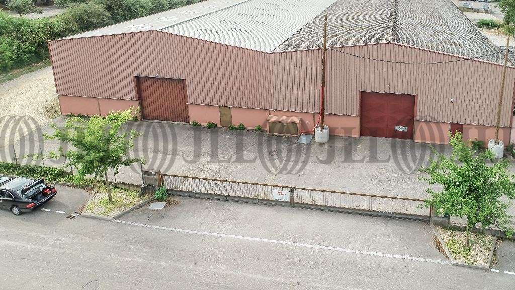 Activités/entrepôt Brignais, 69530 - Négoce : location entrepot Brignais - 9617124