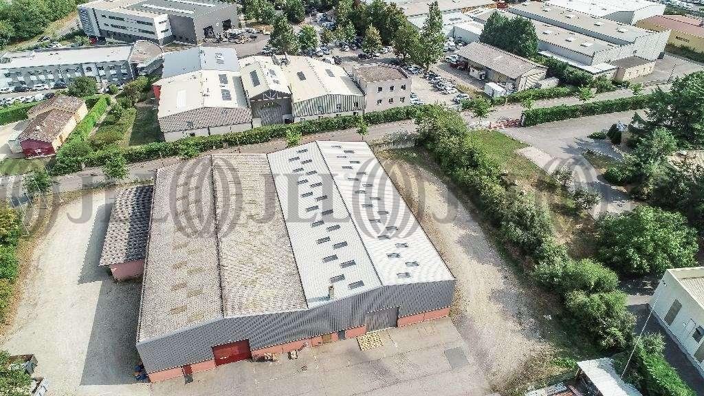 Activités/entrepôt Brignais, 69530 - Négoce : location entrepot Brignais - 9617125