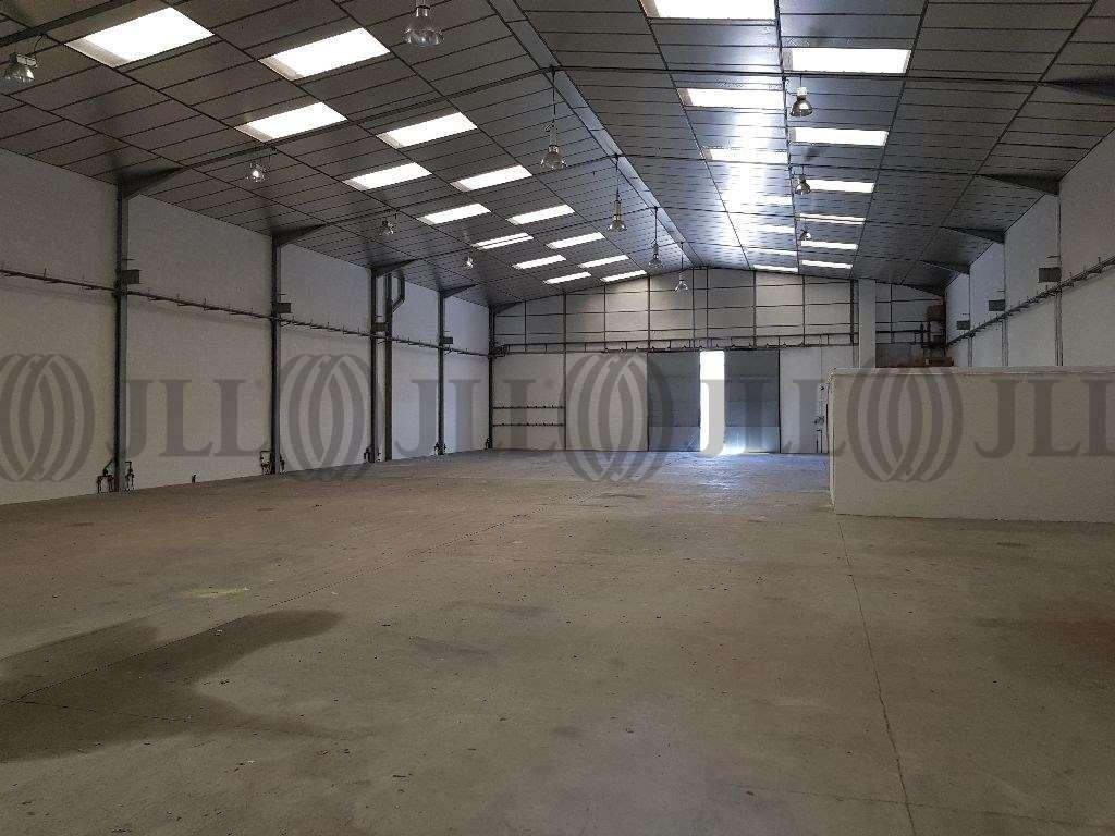 Activités/entrepôt Brignais, 69530 - Négoce : location entrepot Brignais - 9617130