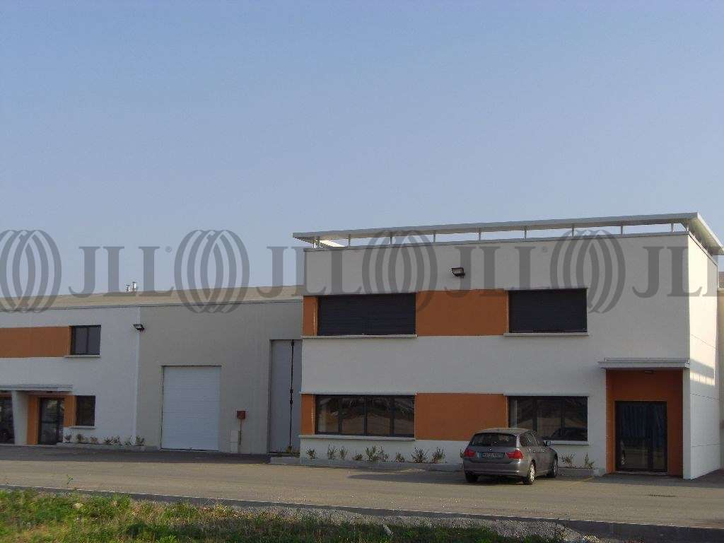 Activités/entrepôt Meyzieu, 69330 - Location locaux d'activité Meyzieu (69) - 9618687