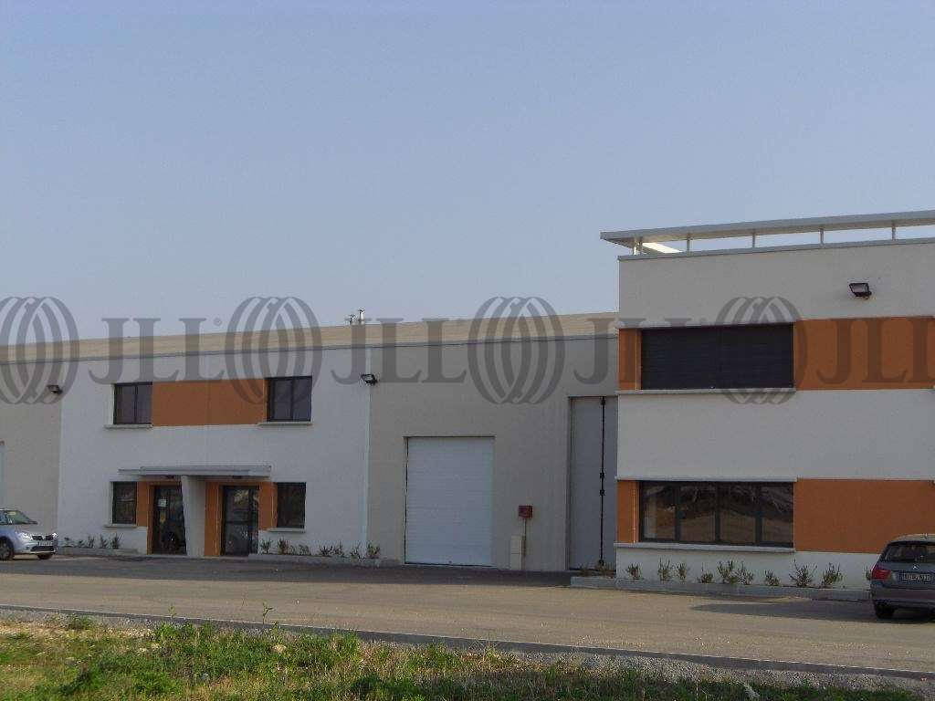 Activités/entrepôt Meyzieu, 69330 - Location locaux d'activité Meyzieu (69) - 9618688