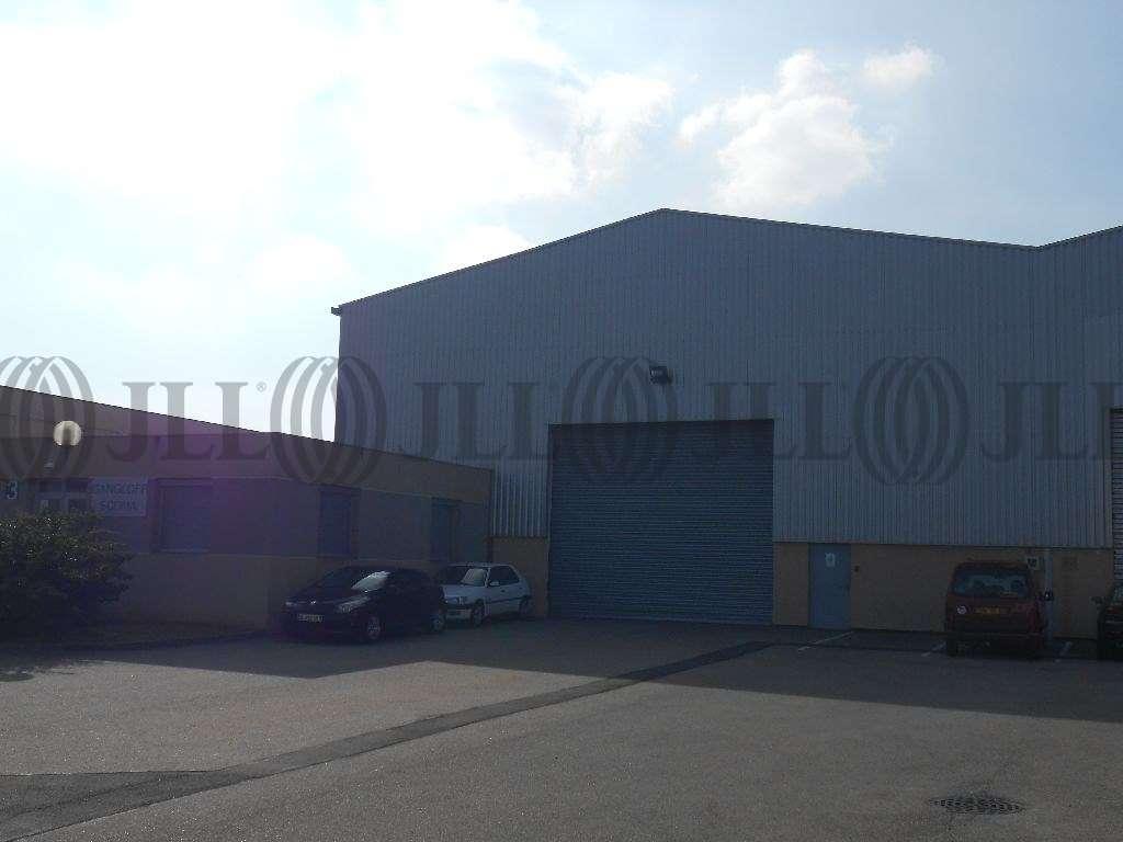 Activités/entrepôt Chassieu, 69680 - A louer - Locaux d'activité Chassieu(69) - 9619721