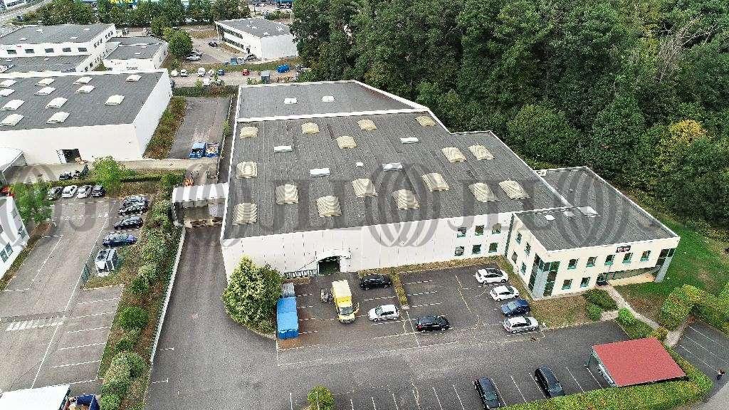 Activités/entrepôt Limonest, 69760 - Négoce - Entrepot à vendre Limonest Lyon - 9630553