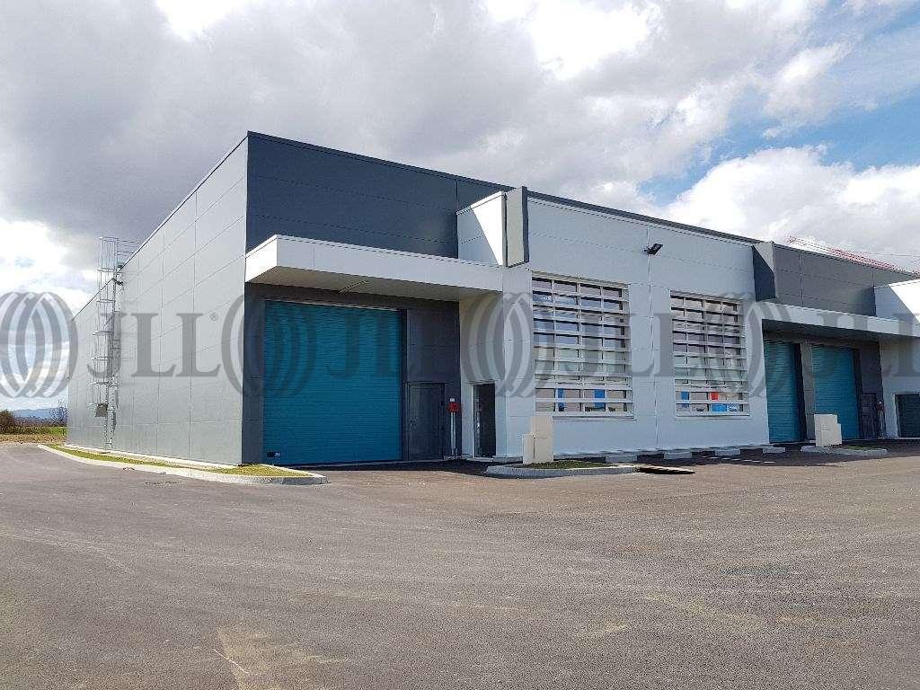 Activités/entrepôt Venissieux, 69200 - Parc Sud Access - Vénissieux - 9642184