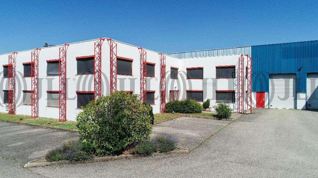 Activités/entrepôt Genas, 69740 - Location entrepot Lyon - Transporteur - 9642204