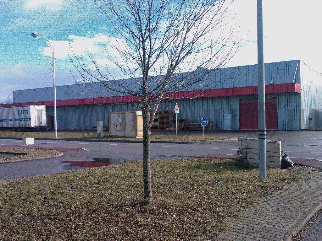 Activités/entrepôt Genas, 69740 - Location entrepot Genas - Lyon Est - 9648052