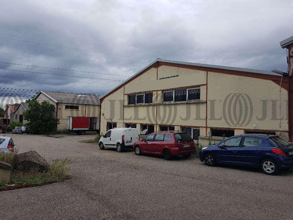 Activités/entrepôt Chassagny, 69700 - Entrepot à vendre Lyon / Chassagny (69) - 9662693