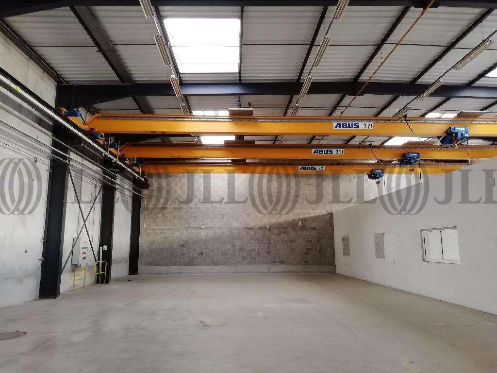 Activités/entrepôt Chassieu, 69680 - Location locaux d'activité Chassieu Lyon - 9761645