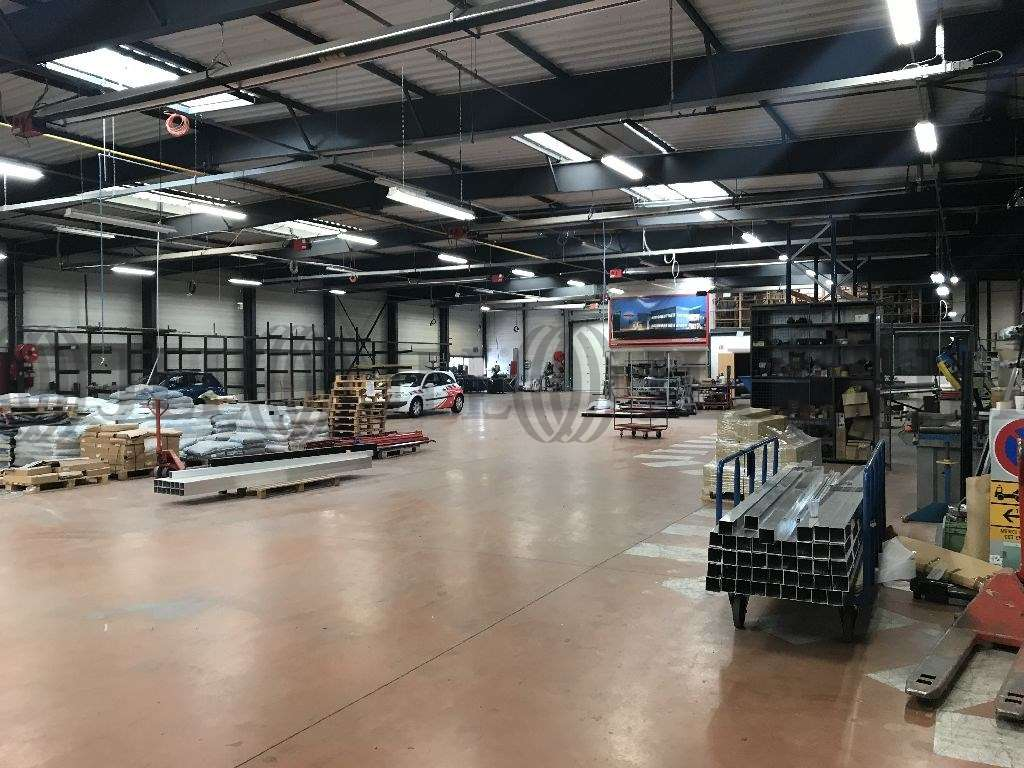 Activités/entrepôt Decines charpieu, 69150 - Entrepot à vendre Lyon Est - Décines - 9781074