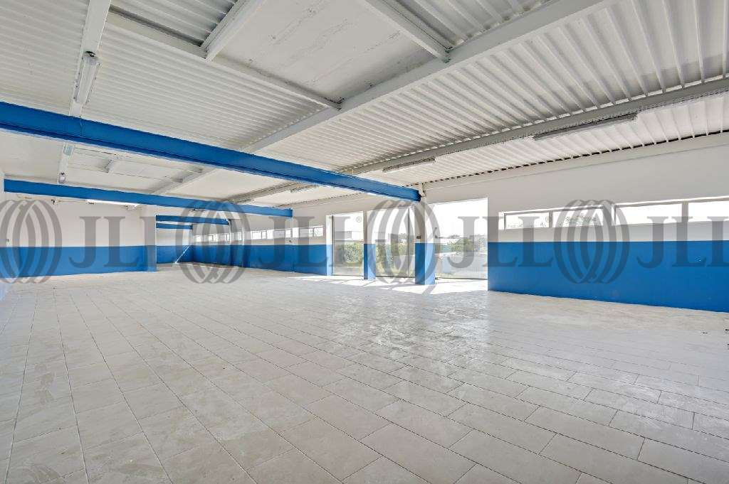 Activités/entrepôt Chilly mazarin, 91380 - ZI LA VIGNE AUX LOUPS - 9786088