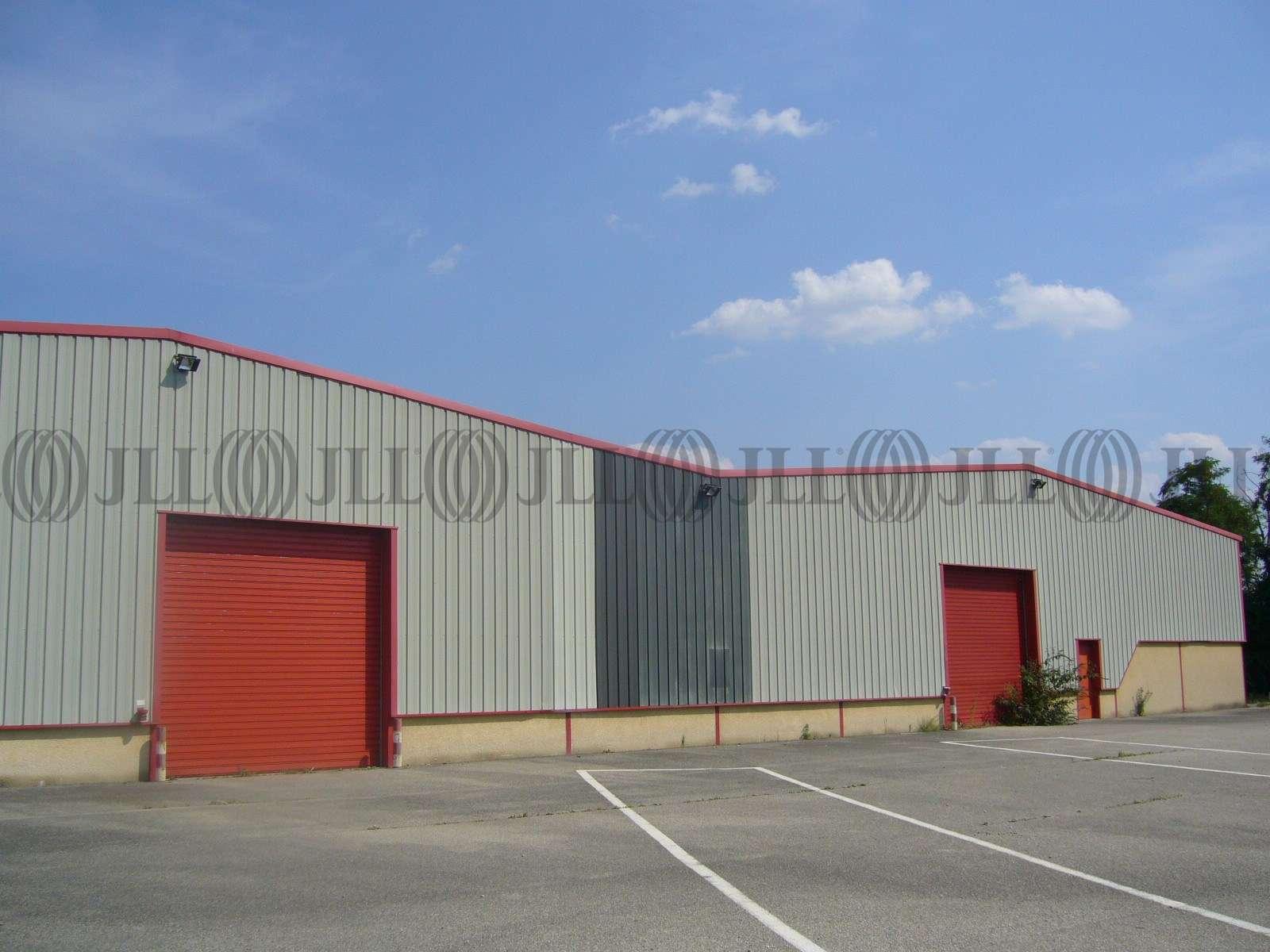 Activités/entrepôt Meyzieu, 69330 - 9 AVENUE DU MARECHAL DE LATTRE DE TASSIGNY - 9786712