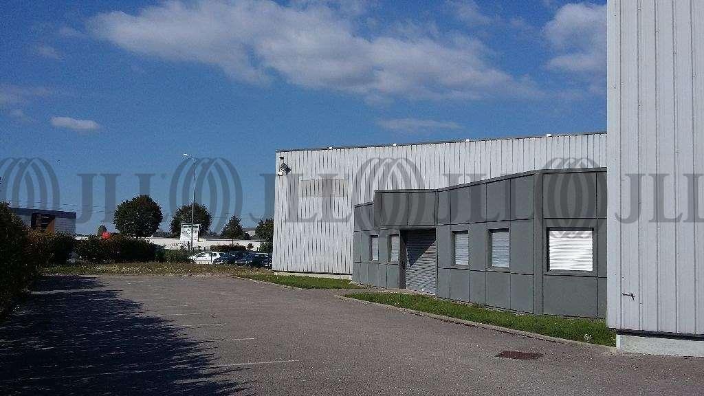 Activités/entrepôt Amberieu en bugey, 01500 - Négoce : achat / location entrepot Ain - 9792054