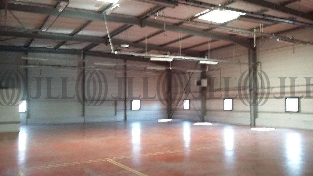 Activités/entrepôt Amberieu en bugey, 01500 - Négoce : achat / location entrepot Ain - 9792055