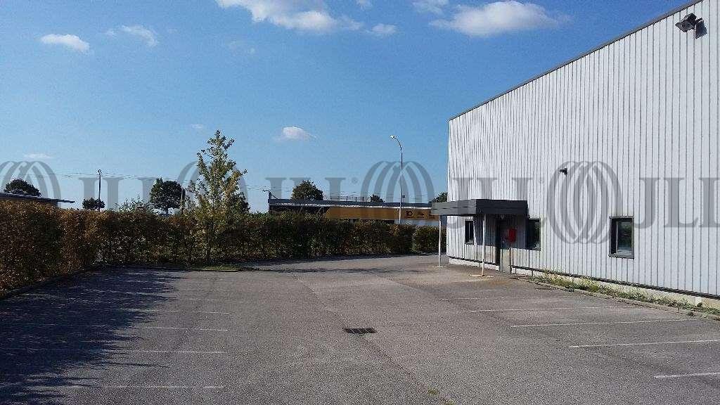 Activités/entrepôt Amberieu en bugey, 01500 - Négoce : achat / location entrepot Ain - 9792053