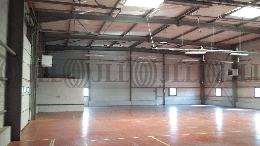 Activités/entrepôt Amberieu en bugey, 01500 - Négoce : achat / location entrepot Ain - 9792056