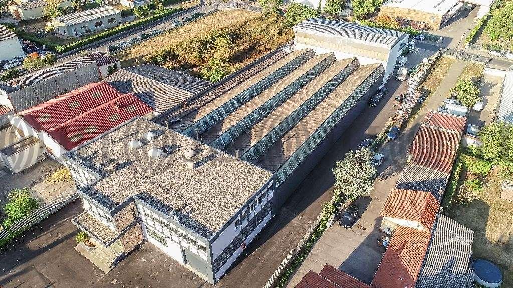 Activités/entrepôt Decines charpieu, 69150 - Location / Vente Entrepôt mixte  - 69 - 9838987
