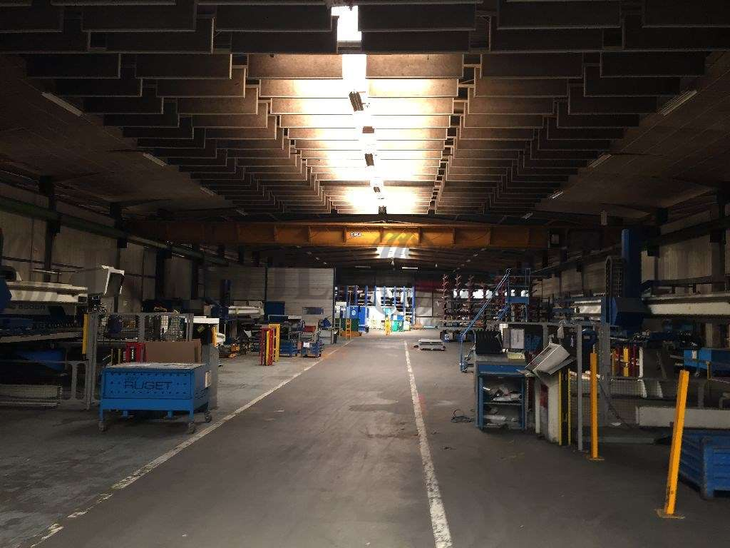 Activités/entrepôt Chaponost, 69630 - A louer locaux d'activité Chaponost (69) - 9932887