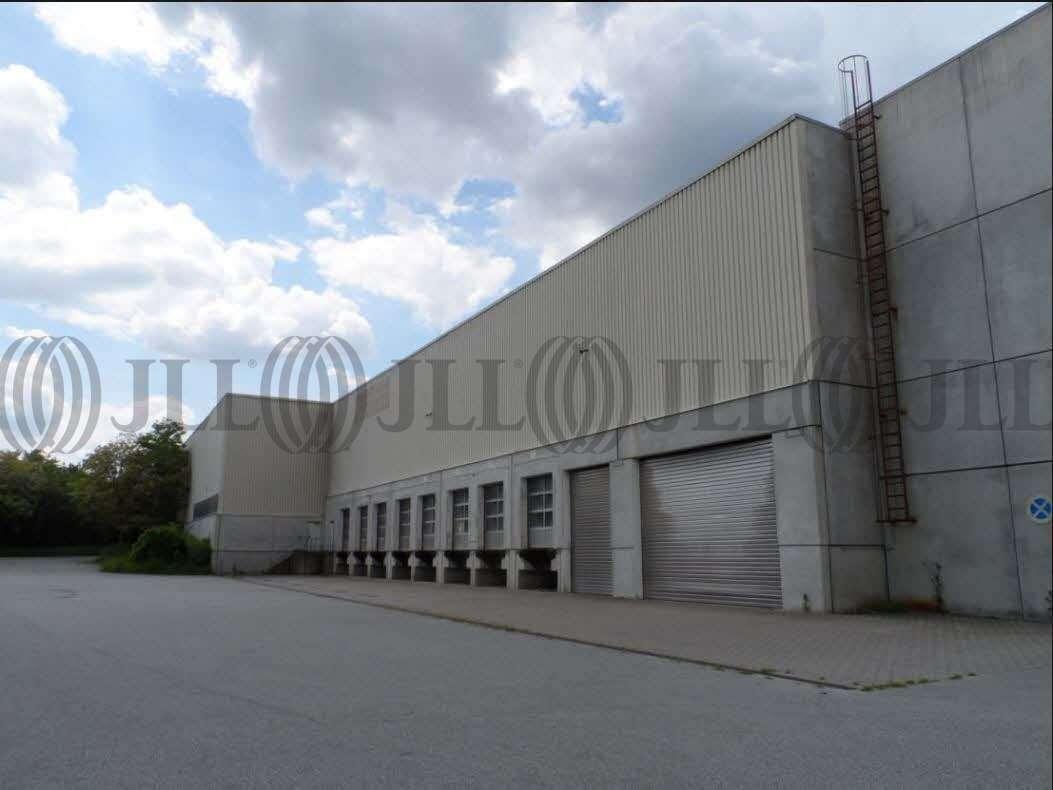 Hallen Viernheim, 68519 - Halle - Viernheim - F1037 - 9934301