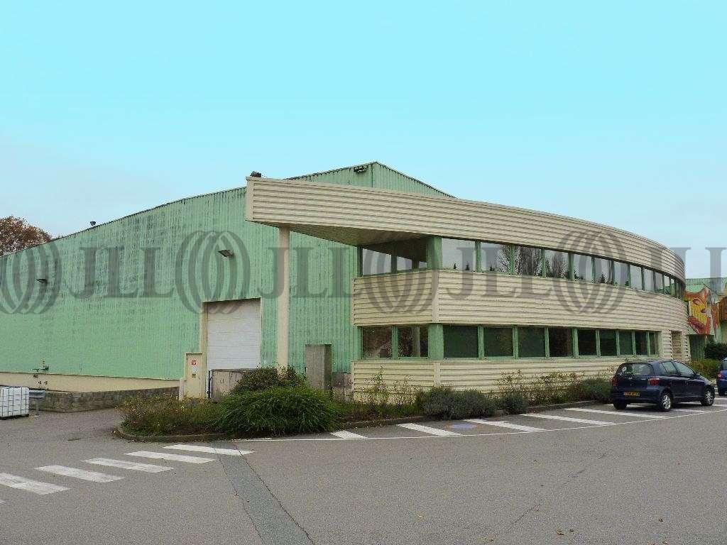 Activités/entrepôt Belleville, 69220 - Entrepôt Belleville à louer - Rhône (69) - 10021058