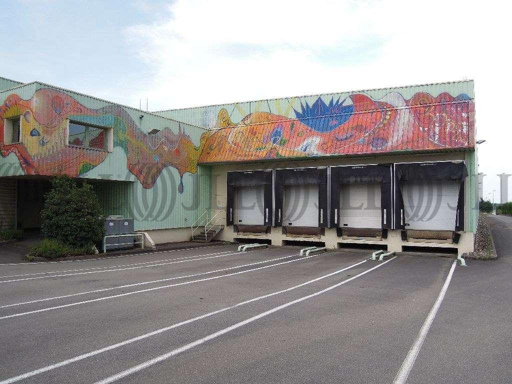 Activités/entrepôt Belleville, 69220 - Entrepôt Belleville à louer - Rhône (69) - 10021059