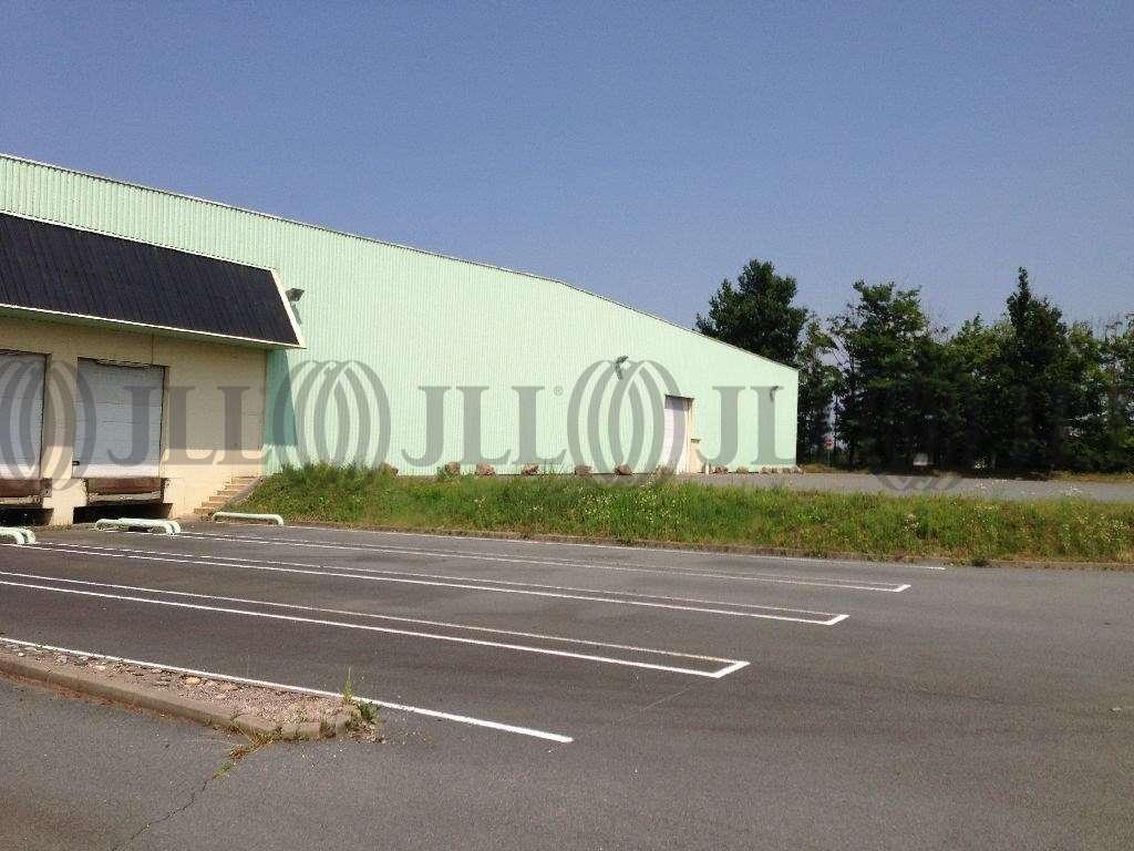 Activités/entrepôt Belleville, 69220 - Entrepôt Belleville à louer - Rhône (69) - 10021063