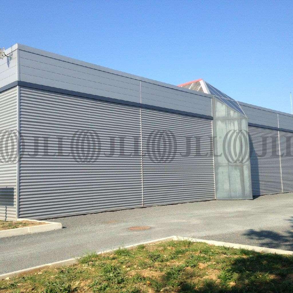 Activités/entrepôt Anse, 69480 - Location local d'activité - Anse (69) - 10021076
