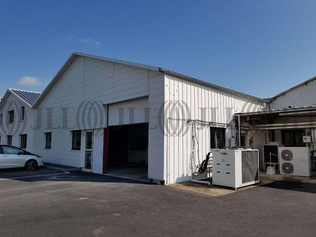 Activités/entrepôt Reyrieux, 01600 - Location locaux d'activité Lyon Nord - 10026839