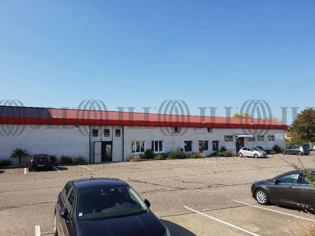 Activités/entrepôt Decines charpieu, 69150 - Location entrepot Décines-Charpieu (69) - 10031817