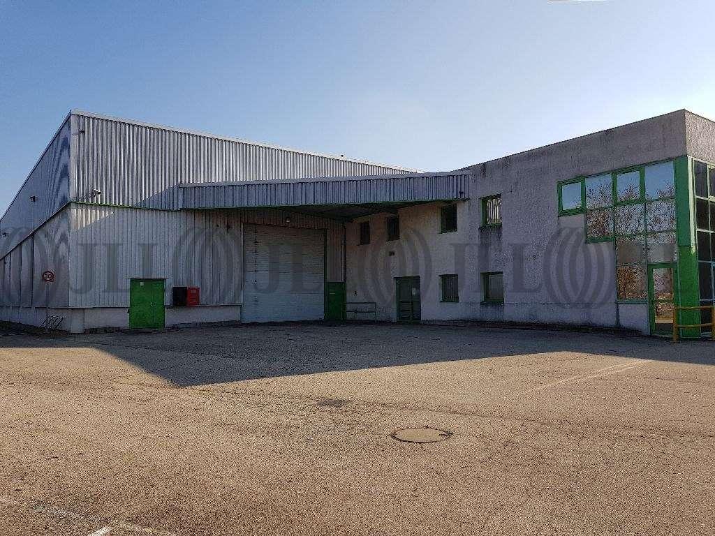 Activités/entrepôt Jassans riottier, 01480 - Lyon Nord : location entrepot Jassans - 10035365