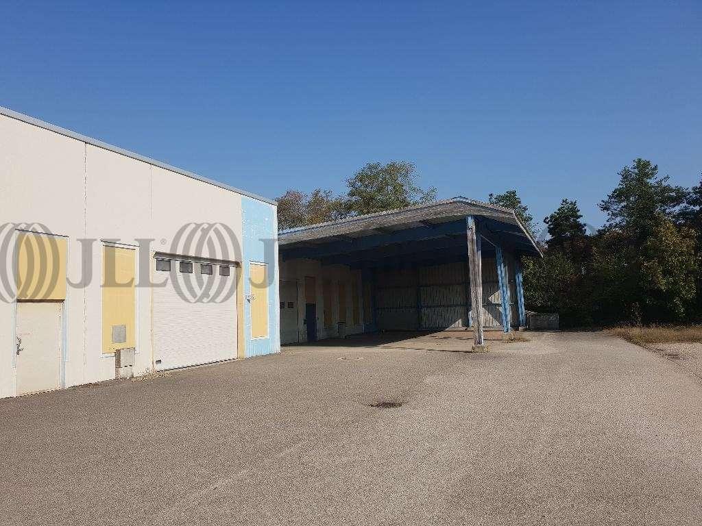 Activités/entrepôt Blyes, 01150 - Location entrepot Lyon / P.I.P.A. - 10035411