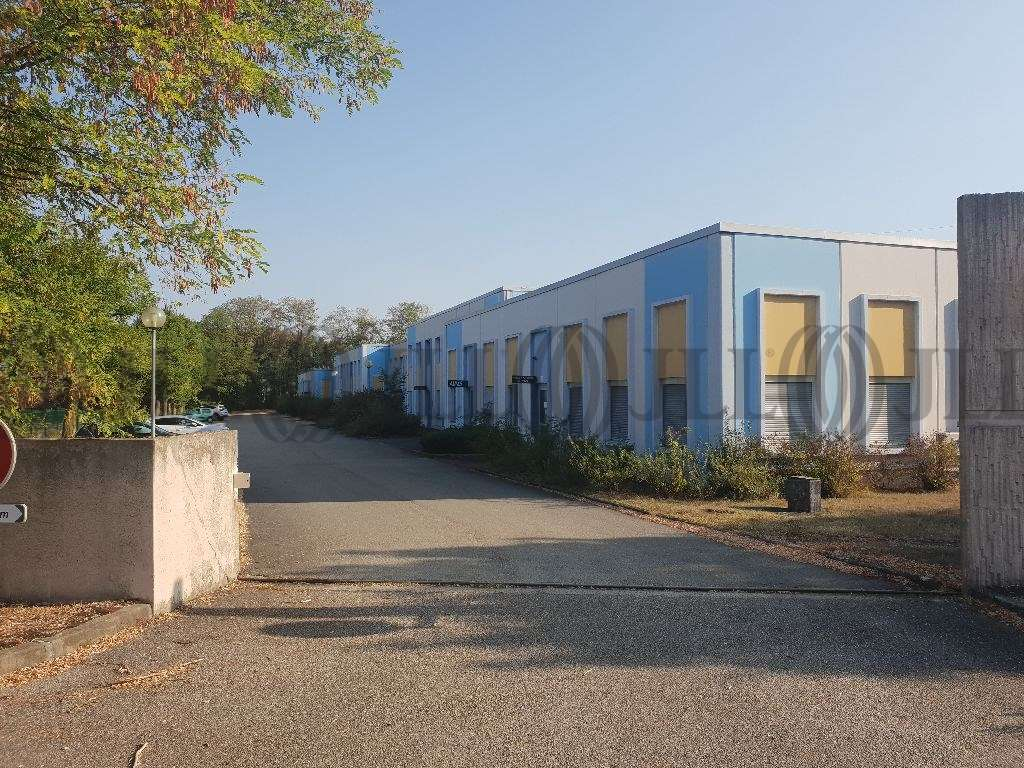 Activités/entrepôt Blyes, 01150 - Location entrepot Lyon / P.I.P.A. - 10035412