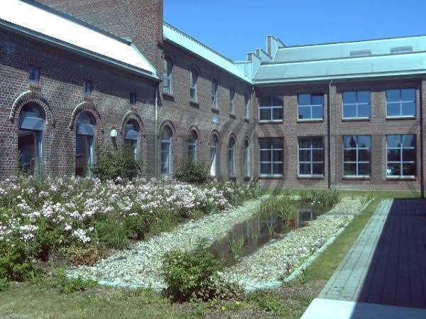Büros Meerbusch, 40670 - Büro - Meerbusch, Osterath - D1415 - 10036416