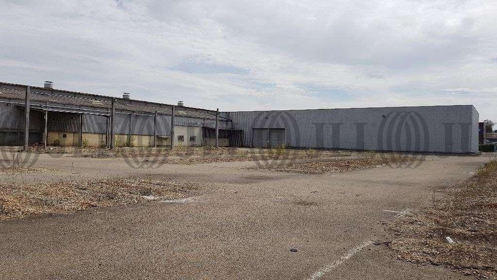 Activités/entrepôt Venissieux, 69200 - Entrepot à vendre Vénissieux (Lyon Est) - 10042369