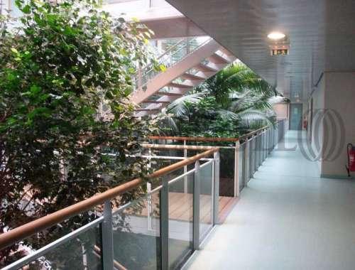 Bureaux Montpellier, 34000 -  - 8428503