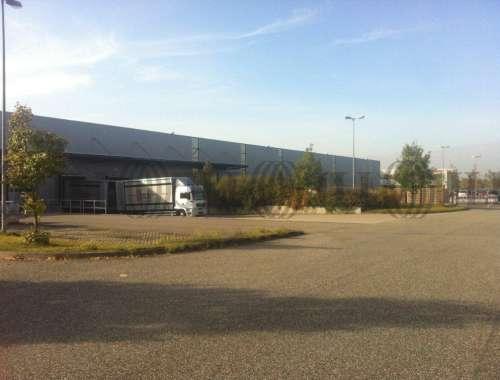 Hallen Bruchsal, 76646 - Halle - Bruchsal - F2115 - 9413395