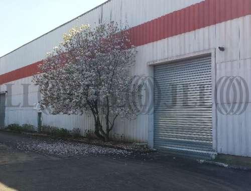 Activités/entrepôt Wissous, 91320 - VILLEMILAN - 9479577