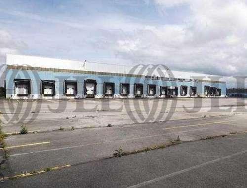 Plateformes logistiques Amiens, 80080 - 60 AVENUE ROGER DUMOULIN - 9476211