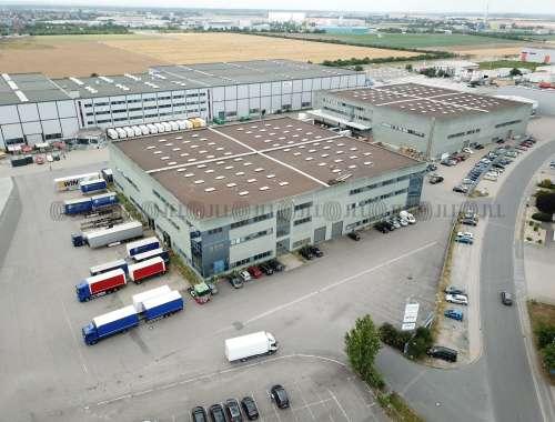 Hallen Gernsheim, 64579 - Halle - Gernsheim - F1642 - 9584139