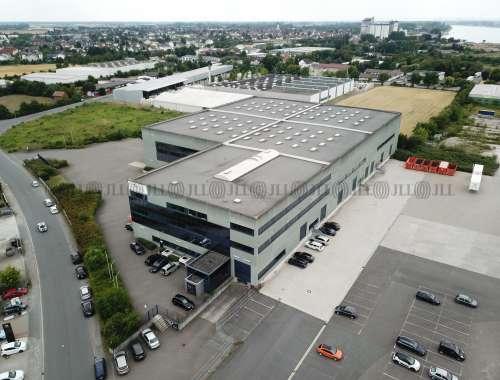 Hallen Gernsheim, 64579 - Halle - Gernsheim - F0553 - 9630957