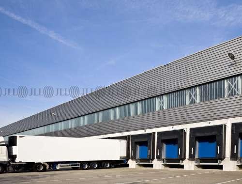 Hallen Mannheim, 68229 - Halle - Mannheim, Friedrichsfeld - F2521 - 9665371