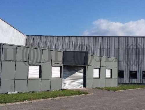 Activités/entrepôt Amberieu en bugey, 01500 - Négoce : achat / location entrepot Ain - 9792052