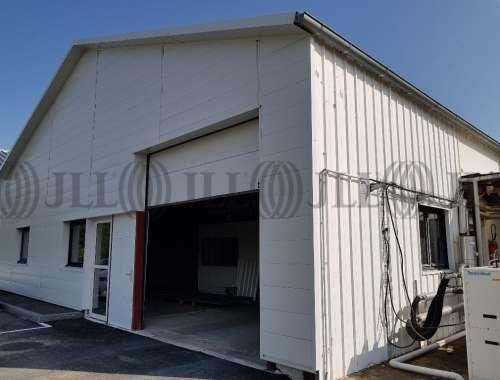 Activités/entrepôt Reyrieux, 01600 - Lyon : location locaux d'activité Ain - 9889663