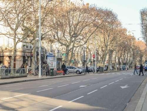 Commerces Lyon, 69006 -  COURS FRANKLIN ROOSEVELT - 9925639