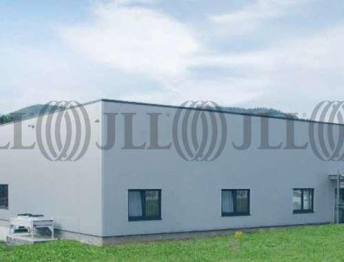 Activités/entrepôt Sonneberg, 96515 - undefined - 10041374