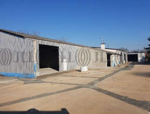 Activités/entrepôt Decines charpieu, 69150 - undefined - 10042361